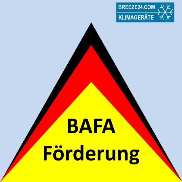 Dienstleistung zur Antragstellung der BAFA-Förderung